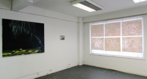 Installation shot: Lorraine Walsh, David Fox & Laura Wade